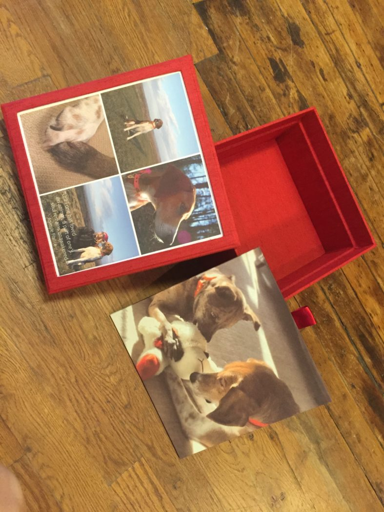 bella forte designs, memory box, best friend, pets, dog, custom,